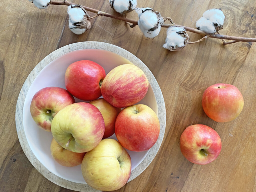 Hausgemachtes Apfelmus